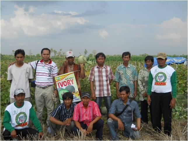 FFD Melon Ivory di Grobogan