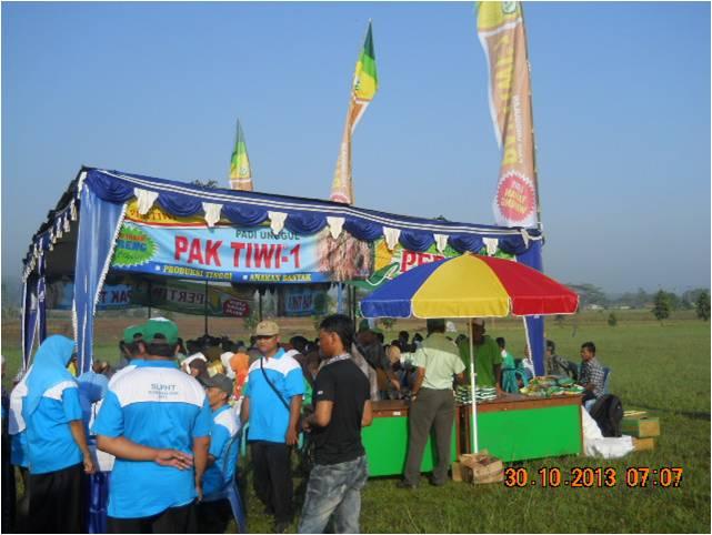 Padi Pak Tiwi 1 di Kec. Subah, Batang (4)