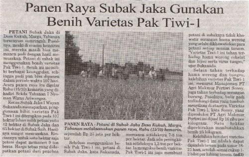 Panen Raya - Petani di Subak Jaka Desa Kukuh, Marga, Tabanan melaksanakan panen raya.