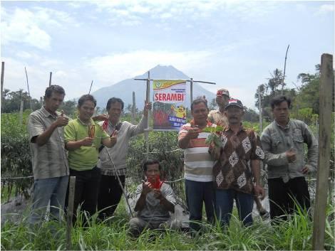 Studi Banding Cabe Serambi di Kec. Dukun, Magelang
