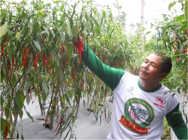 FFD Serambi di Kec Dukun, Magelang