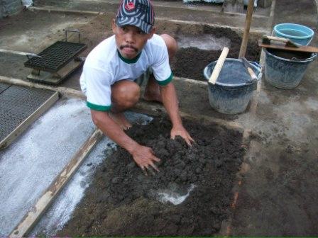 Tanah dan kompos dicampur merata dengan perbandingan 2:1 dicampur sehingga membentuk adonan.