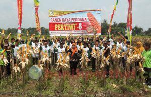 Pertiwi-6 Jateng