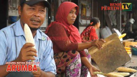 Jagung Ketan Bakar dari Lombok