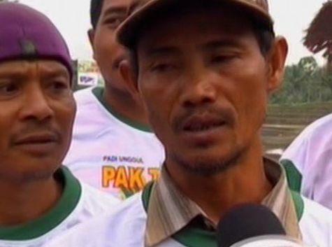 Padi Pak Tiwi-1 Lebih Unggul